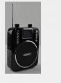 正品歌郎Q22多媒体扩音器插卡音箱大功率录音遥控歌词